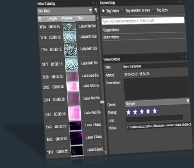 downloadhelper - Video Clip Manager - Vidine